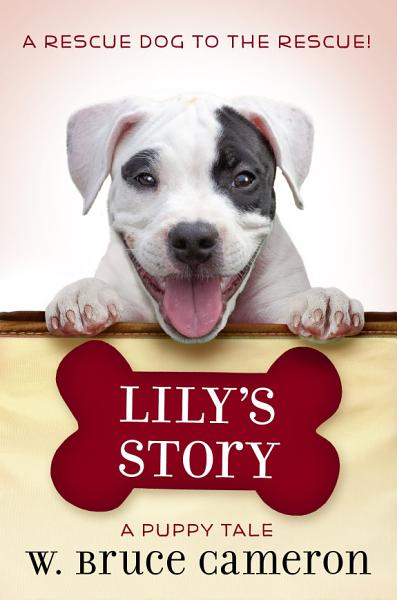Download Lily s Story Book
