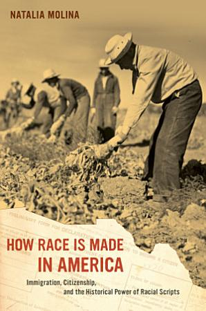 How Race Is Made in America PDF