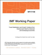 Fiscal Stabilization and Growth: Evidence from Industry-level Data for Advanced and Developing Economies
