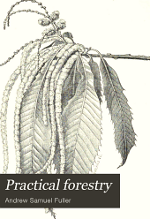 Practical forestry: A treatise on the propagation, planting, and cultivation, with a description, and the botanical and popular names of all the indigenous trees of the United States ...