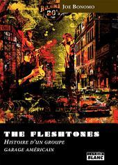 CAMION BLANC: THE FLESHTONES Histoire d'un groupe de Garage américain