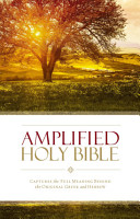 Amplified Holy Bible  eBook PDF