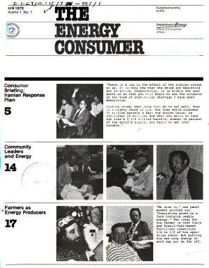 The Energy Consumer