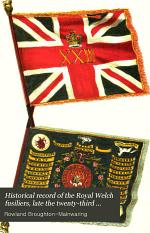 Historical Record of the Royal Welch Fusiliers, Late the Twenty-third Regiment