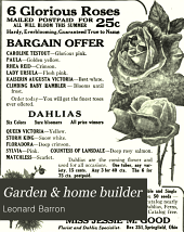 Garden and Home Builder: Volume 15