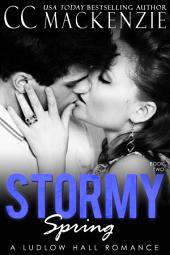 A Stormy Spring: A Ludlow Hall Romance - Book 2: Becca and Lucas