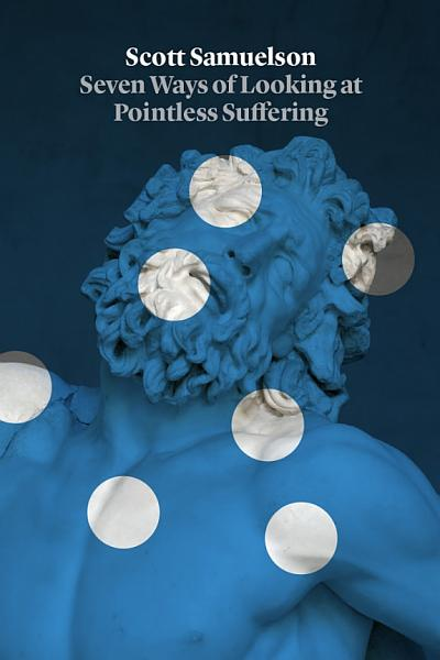Download Seven Ways of Looking at Pointless Suffering Book