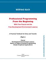 Professional Programming From the Beginning PDF