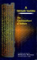 A Thousand Teachings PDF