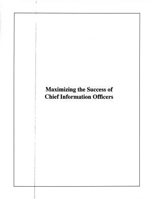 Maximizing the Success of Chief Information Officers Cio PDF