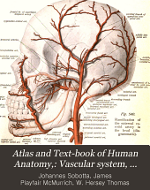 Atlas and Text-book of Human Anatomy,: Vascular system, lymphatic system, nervous system and sense organs