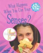 What Happens When You Use Your Senses?