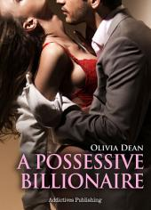 A Possessive Billionaire vol.2: His, Body and Soul