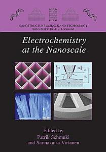 Electrochemistry at the Nanoscale