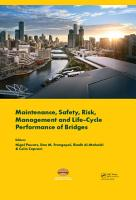 Maintenance  Safety  Risk  Management and Life Cycle Performance of Bridges PDF