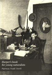 Harper's Book for Young Naturalists: A Guide to Collecting and Preparing Specimens, with Descriptions of the Life, Habits and Haunts of Birds, Insects, Plants, Etc
