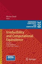 Irreducibility and Computational Equivalence