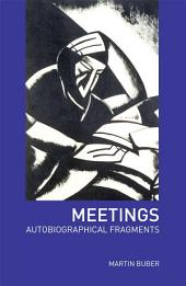 Meetings: Autobiographical Fragments, Edition 2