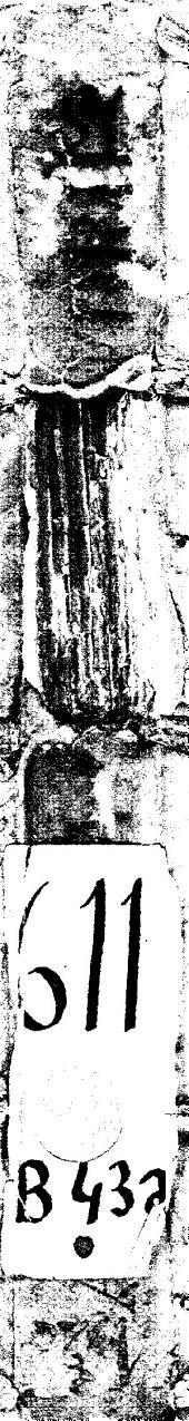 Anatomice siue De hystoria corporis humani libri quinque: eiusdem Aphorismorum liber ; Aphorismi Damasceni