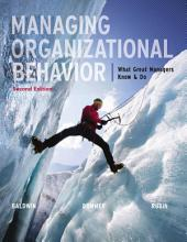 Managing Organizational Behavior: What Great Managers Know and Do: Second Edition