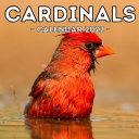 Cardinals Calendar 2022