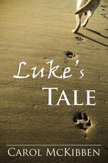 Luke s Tale PDF