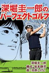 深堀圭一郎のパーフェクトゴルフ