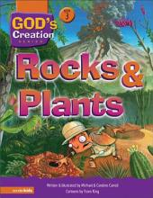Rocks and Plants