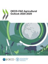 OECD FAO Agricultural Outlook 2020 2029 PDF