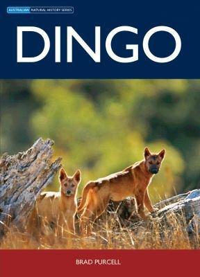 Dingo PDF