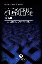 La Caverne Cristalline - Le défi du labyrinthe : Volume2