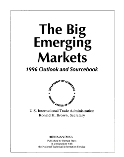 The Big Emerging Markets PDF