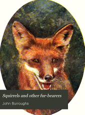 Squirrels and Other Fur Bearers