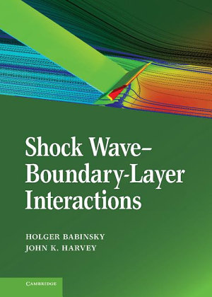 Shock Wave Boundary Layer Interactions