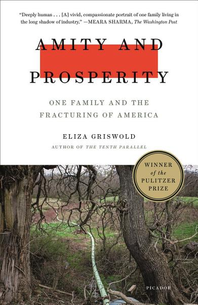 Download Amity and Prosperity Book