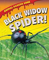 Black Widow Spider!