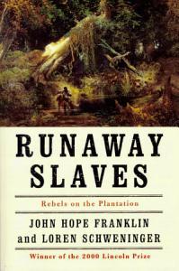 Runaway Slaves Book