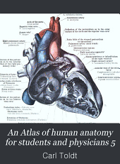 An Atlas of human anatomy for students and physicians 5: Volume 5