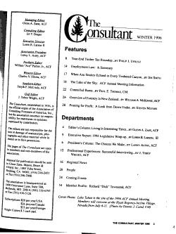 The Consultant PDF