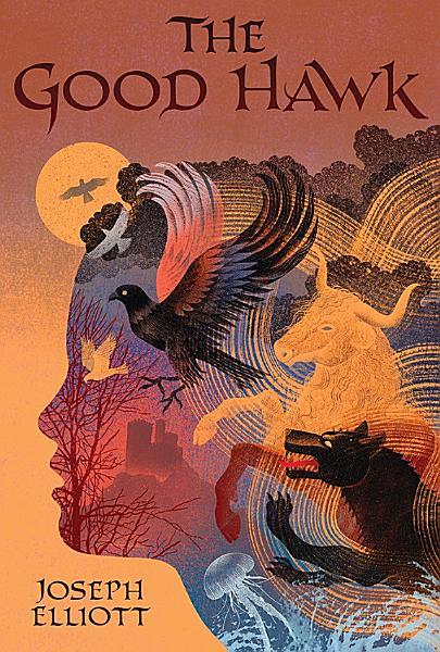 Download The Good Hawk  Shadow Skye  Book One  Book
