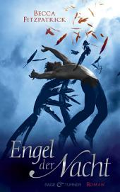 Engel der Nacht 1: Roman