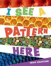 I See a Pattern Here PDF