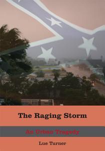 The Raging Storm PDF