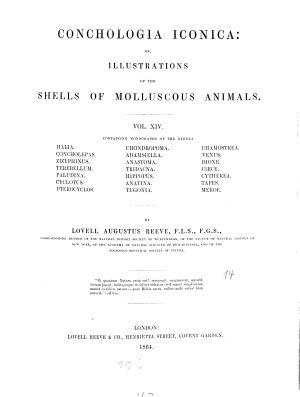 Conchologia Iconica  Or  Illustrations of the Shells of Molluscous Animals PDF