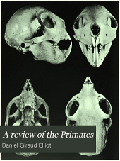 A review of the Primates: Volume 1