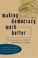Making Democracy Work Better PDF