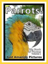 Just Parrot Birds! vol. 1: Big Book of Bird Parrots Photographs & Pictures