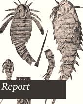 Report: Volume 65, Issue 3
