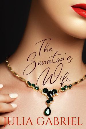 The Senator s Wife PDF