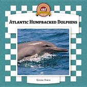 Atlantic Humpbacked Dolphins